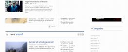 Newspaper Website Designing